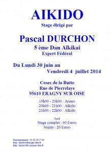 stage_p_durchon_2014